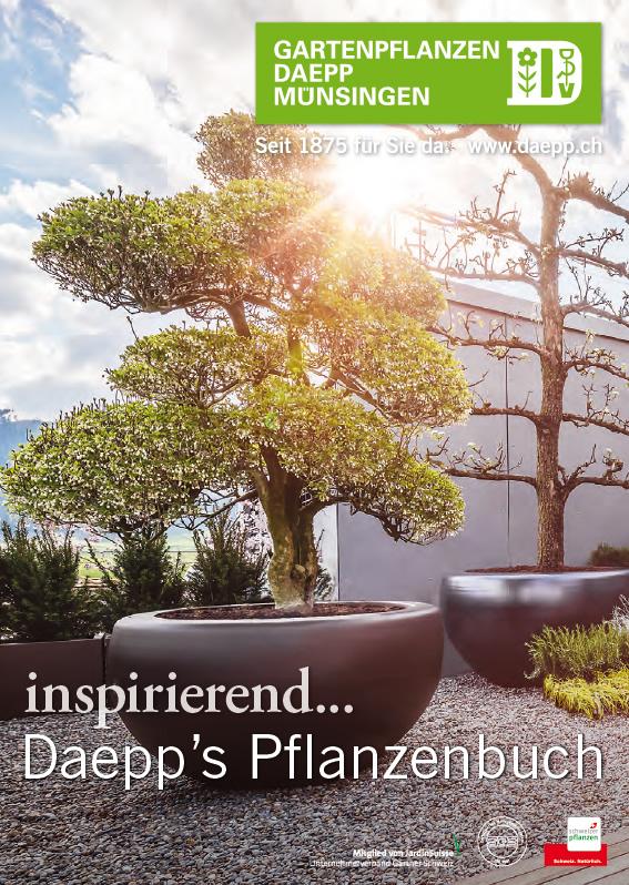 inspirierend… Daepp's Pflanzenbuch